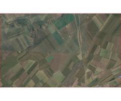Cumpar ferma agricola / terenuri arabile de peste 1000ha