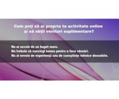 Cum poţi să ai propria ta activitate online şi să obţii venituri suplimentare?